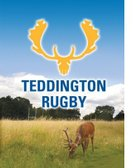 Teddington RFC Minis Sunday 16th - Welcome BBQ (and so much more going on at Bushy Park)