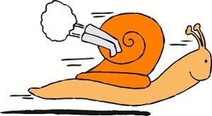 SMCC Escargo (Snail) Award