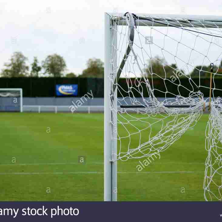 Goal Nets Wanted