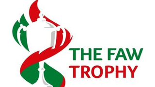 Important : FAW Trophy Cup Final  Spectator Information