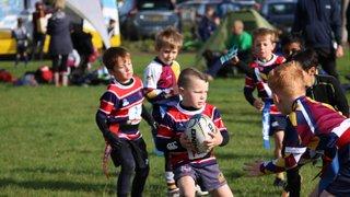 Grove RFC Juniors Tournament 5 October 2019