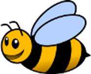 Bees - U14