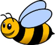 Bees - U15