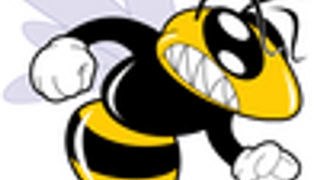 Hornets - U18