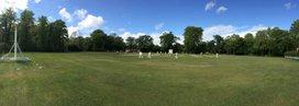 Cricket Week XIs