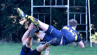 Third successive win since Christmas for 1st XV