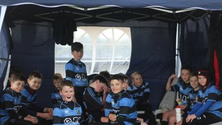 Good Friday Festival of Rugby