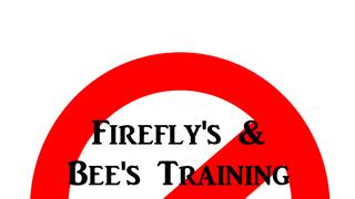 Firefly's & Bee's - Tuesday 6th November