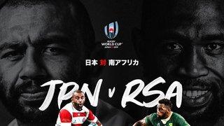 Japan v South Africa RWC 1/4 Final