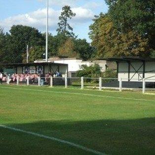 Hanworth Villa 0 Molesey 1