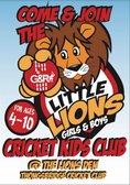 Little Lions Launch!