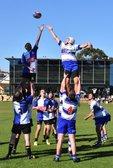 Junior Rugby Information