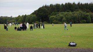 Kwik Cricket Festival 020815