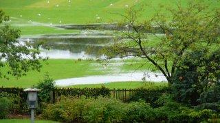 Riverside Park 11 August 2011 - Apres le deluge.