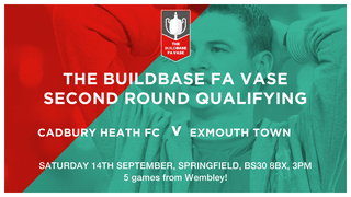 Up Next For The Heath - Home to Exmouth Town, Springfield, Sat 14th Sept, 3pm