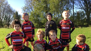 Super day for rugby