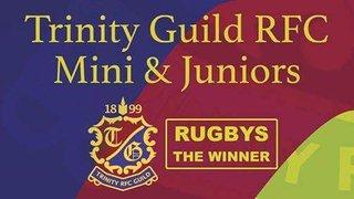 Trinity Guild RFC needs you!