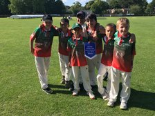 Success for U8s and U9s at Marlow Big Bash
