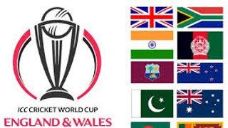 Cricket World Cup Sweepstake