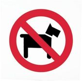 Dogs Policy