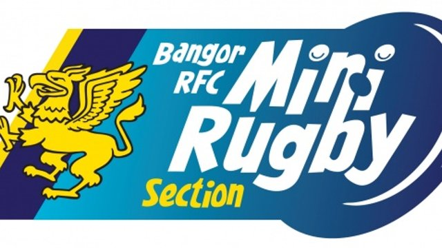 Mini Rugby Section