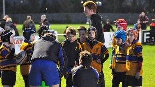 Mini Rugby - Sun 17/1/16