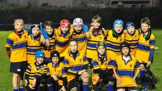 11/7/15  Mini Rugby Floodlit Festival