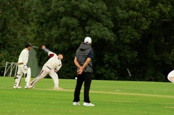 COXA Cricket 2014 season
