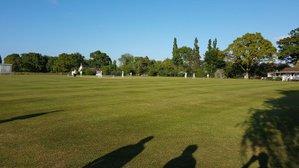 Learning Disability Kwik Cricket