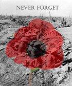 Remembrance Sunday 12th November 2017