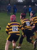 Grab those rugby boots!  Mini and Junior Training Starts Tonight!