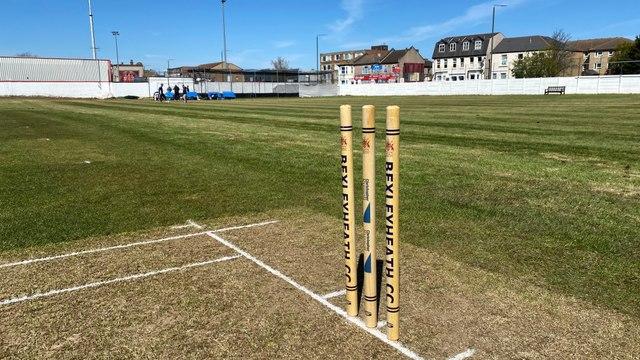 Cricket returns to BHCC