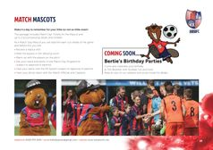 Match Mascots