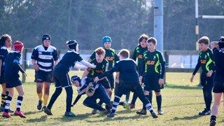 Golds vs Ipswich/Felixstowe 18 Feb 2018