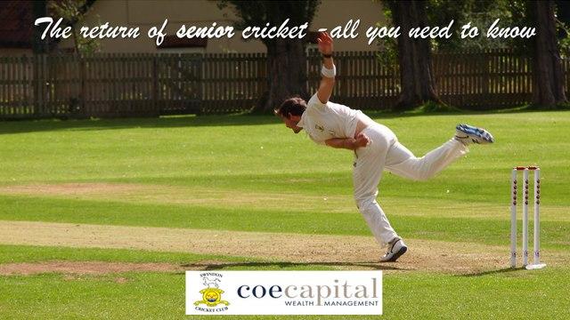 The return of senior cricket