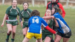 Women's Rugby Development Festival by Bev Clough Photography