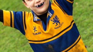 Welcome to Mini Rugby