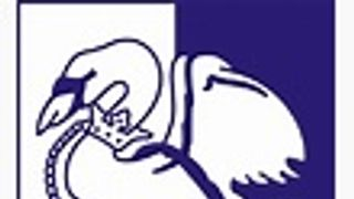 Match Report - Marlow (Away - Berks & Bucks Senior Cup, semi-final))