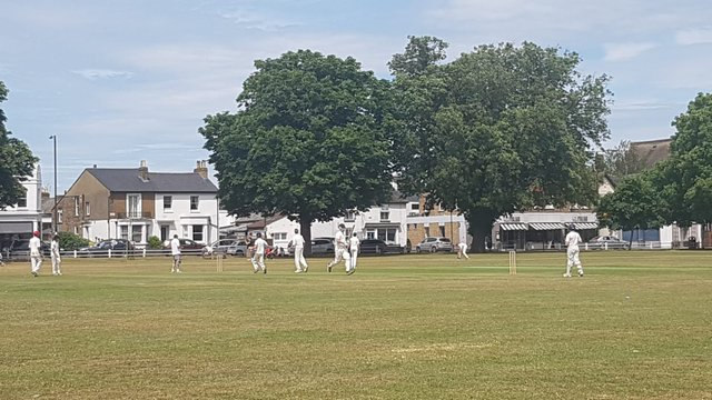 Ts welcome Old Hamptonians on Thursday of Cricket Week