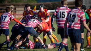 Colts vs Shelford Feb 2019