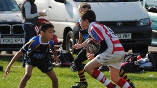 Wetherby U11s v West Park and Roundhegians
