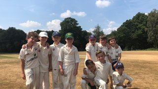 U9s NEC softball - superb effort in defeat against a strong Sutton side