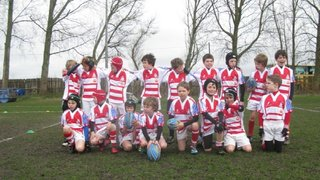 Southport Rugby Tour under 9's pictures