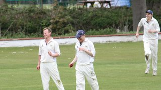 2nd XI - Paddock Shield - Home to Lascelles Hall