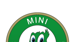 Mini Duck Sessions