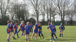 U10s v Holderness Vikings on 2/3/2019