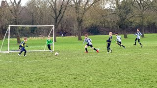 Lions u9 vs Pinner United