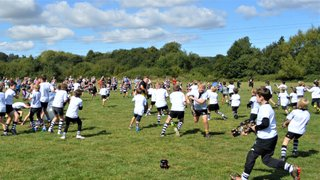 Minis Raise £1,500 for Cancer Research