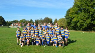 "Chipstead 'Exiles' Golds reach Plate semi-final of Surrey ""B"" Festival"