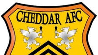 TEN MAN GROVE LEAVE CHEDDAR CHEESED OFF
